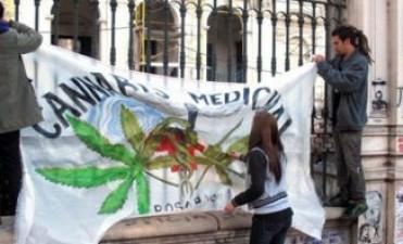 """""""Estamos por dar un paso fundamental para producir Aceite de Cannabis con fines medicinales"""""""