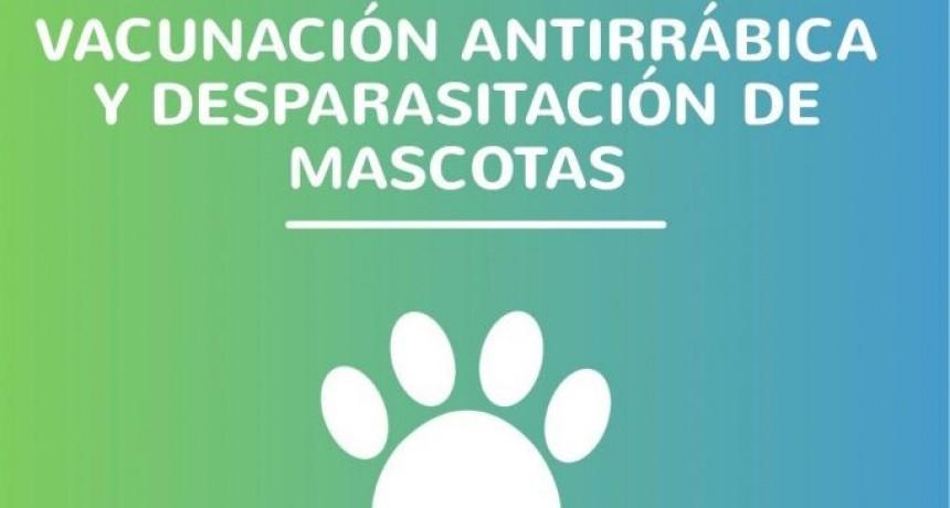 Vacuná a tu mascota en el Quirófano móvil este fin de semana