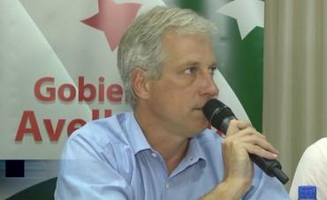 Scarpin pide mayor seguridad para Avellaneda