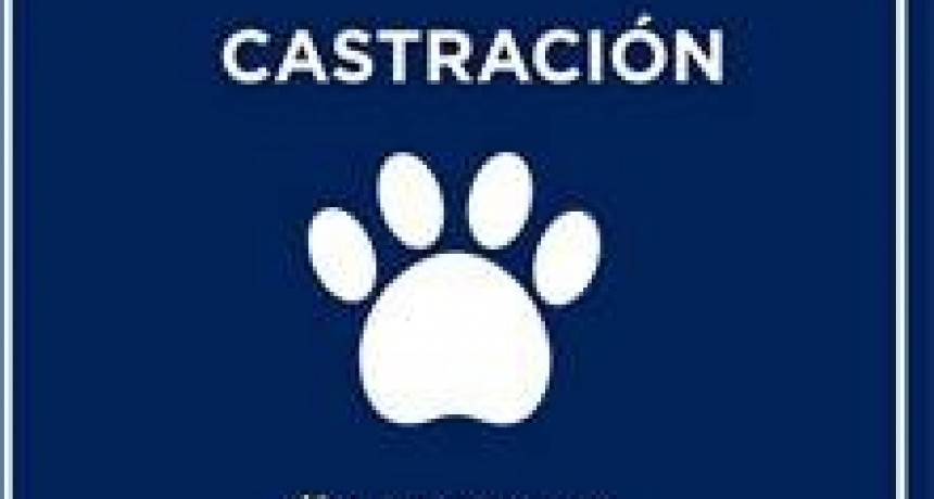 Castraciones en Barrio Don Pedro de Avellaneda