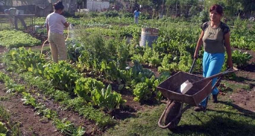 Finalizó la tercera mesa de coordinación de desarrollo de la agricultura familiar
