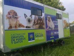 Continúan las actividades en el quirófano veterinario móvil de Reconquista