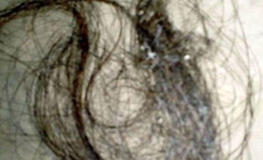 Caso Rosalía Jara: confirman que el cabello encontrado es humano