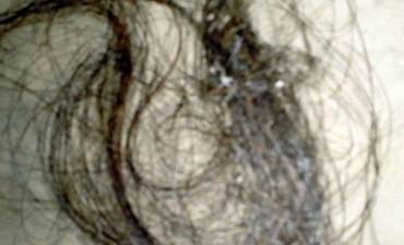Rosalía Jara: el primer análisis a los cabellos dio negativo